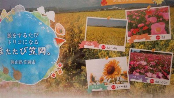 笠岡ベイファーム四季の花