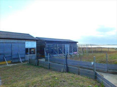 柴垣海の家、元は漁師小屋